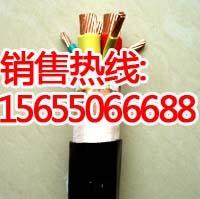 高壓變頻電纜型號 高壓變頻電纜用途