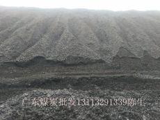 廣東惠州哪里有5000大卡的優質煙煤