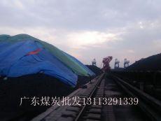 2016年广东肇庆煤炭最新价格行情