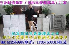 浙江11表电表箱模具加工